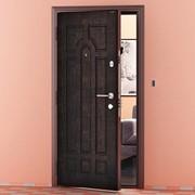 Металлические двери , DoorHan фото