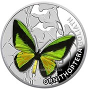 Бабочки. Орнитоптера Голиаф Серебряная монета фото