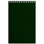 Блокнот на спирали А5 60л. зелен.картон д/лог.клет.32 фото