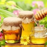 Мёд из домашней пасеки фото