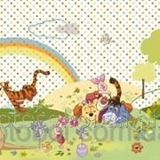 """Фотообои """"Winnie Beautiful Day"""" 127х368 4-410 2000000404691 фото"""