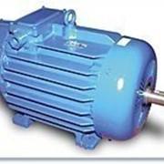 Электродвигатель 4МТКМ 200 LB8 22/700 кВт/об фото
