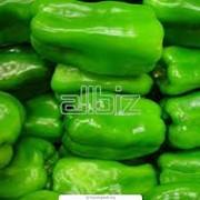 Перец овощной фото