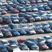 Срочный выкуп легковых автомобилей Львов и Западный регион. Дорого, расчет на месте! Покупка авто после ДТП. фото