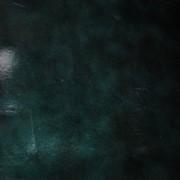 Кожа КРС зеленый лак фото