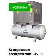 Винтовой компрессор электрический LUPAMAT Турция фото
