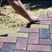 Работы по укладке тротуарной плитки фото