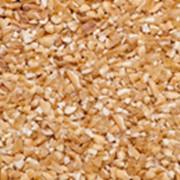 Пшеница дробленая фото