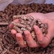 Топливные гранулы фото