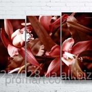 Модульна картина на полотні Червона орхідея код КМ100160-243-ANT фото