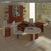 Мебель для кабинета руководителя Берлин-директор фото