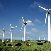 Ветропарки, ветровые электростанции фото