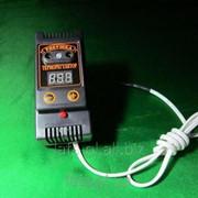 Терморегулятор цифровой Рябушка для инкубатора фото