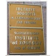 Институт Зоологии им. И.И. Шмальгаузена НАН Украины, ГП Научные услуги фото