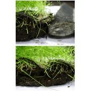 Биомат для укрепления грунта Арнит-Н фото