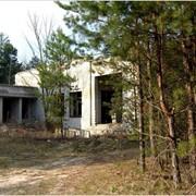 База Отдыха в сосновом лесу ( недострой) фото