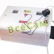 Инкубатор автоматический «Курочка Ряба» ИБ-100 вместимостью 100 яиц с двойным пластиковым корпусом фото