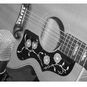 Запись инструментов (студия Grand Art Media) фото