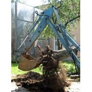 Удаление деревьев.Обрезка,спил,корчевание фото