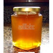 Липовый мед фото