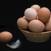 Яйца,Яйцо столовое,Продукция птицеводства,Продукты и напитки фото