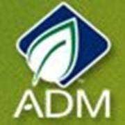 Жидкий соевый лецитин АДМ, Нидерланды фото