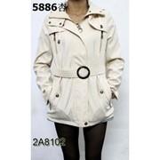 Куртки женские фото