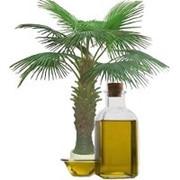 Пальмовое масло 99,9% фото