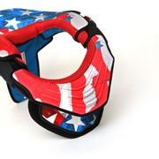 Ошейник Leat Brace Club AmeriCan Flag фото