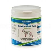 Минеральная добавка для собак Canina CANHYDROX GAG (GAG Forte) (Канина) 60 таб фото