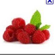 Переработка и реализации ягод МАЛИНА фото