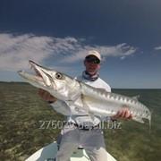 Тур рыбалка на западном побережье Мексики Bahia de Banderas фото
