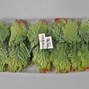 Листья зеленые дуба 9 см/144 шт 570631 фото