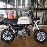 Мопед мокик Honda Monkey Gorilla рама Z50J гв 2001 Minibike задний багажник пробег 7 т.км белый фото
