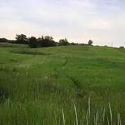 Земельные участки под застройку Киево-Святошинский р-н фото