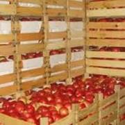 Овоще фруктохранилища, Купить фото
