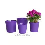 """Горшок пластиковый """"Фиалка"""" фиолетовый DOF 14 фото"""