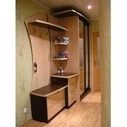Шкаф-купе, комбинированный шкаф-купе, прихожие. фото