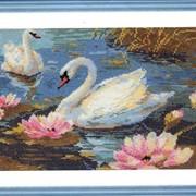 Набор для вышивания крестом Лебединая пара фото