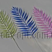 Лист пальмы с блеском 27/40 см 3633 фото