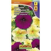 Семена Петуния Боярыня F1 крупноцветковая, смесь окрасок Ц/П фото