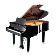 Профессиональная настройка фортепиано фото