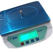 Весы фасовочные TS-500 фото