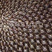 Семена подсолнечника Одісей фото