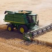 Услуги по уборке зерновых фото