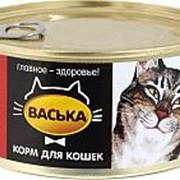 Васька 325г конс. Влажный корм для взрослых кошек для профилактики МКБ паштет из Телятины фото
