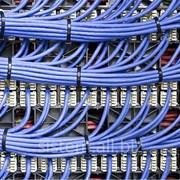 Монтаж Локальных сетей. Настройка локальных сетей. фото