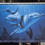 Фотожалюзи Дельфины фото
