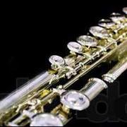 Флейта Леонардо фото