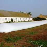 Полиэтиленовые мешки для хранения зерна и силоса фото